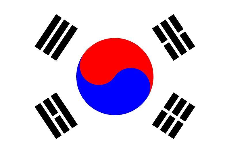 Tradução Simultânea, Consecutiva, Juramentada, Versão Idioma Coreano